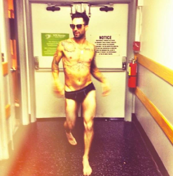 Adam levine in underwear behati prinsloo
