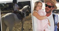 Harper beckham horse back riding lesson