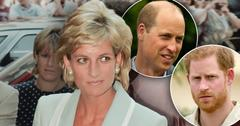 Prince William Cut Prince Harry Out Of New Princess Diana Investigation