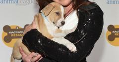 2013 Animal League America Celebrity Gala