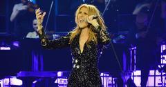 Celine dion cries first concert husband death HERO