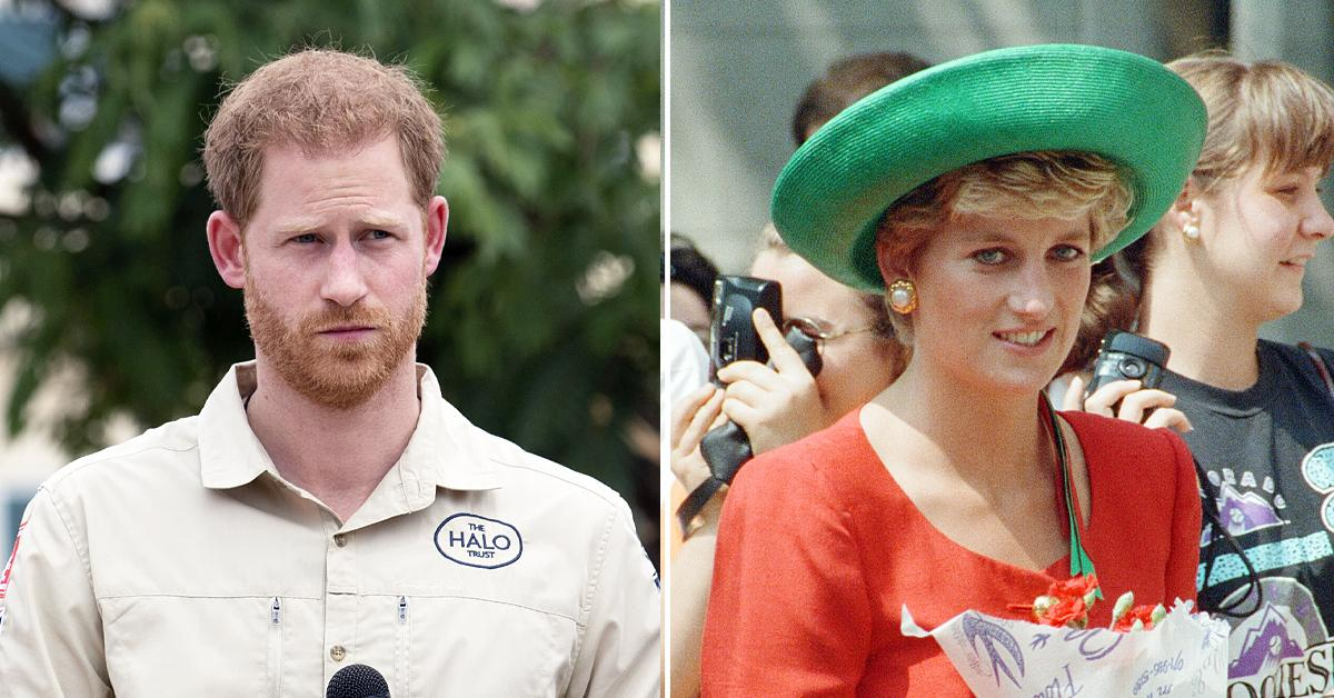 prince harry officially stripped his royal highness title princess diana exhibit ok