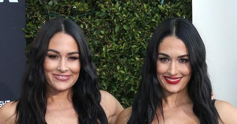 Brie Bella and Nikki Bella Smiling
