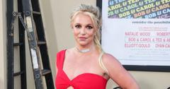 jamie spears remain britney spears conservator bessemer trust estate framing britney spears