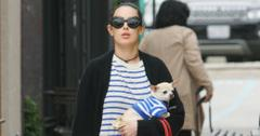 Rumor willis matching outfits dogs feature