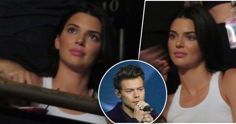 Kendall jenner harry styles concert