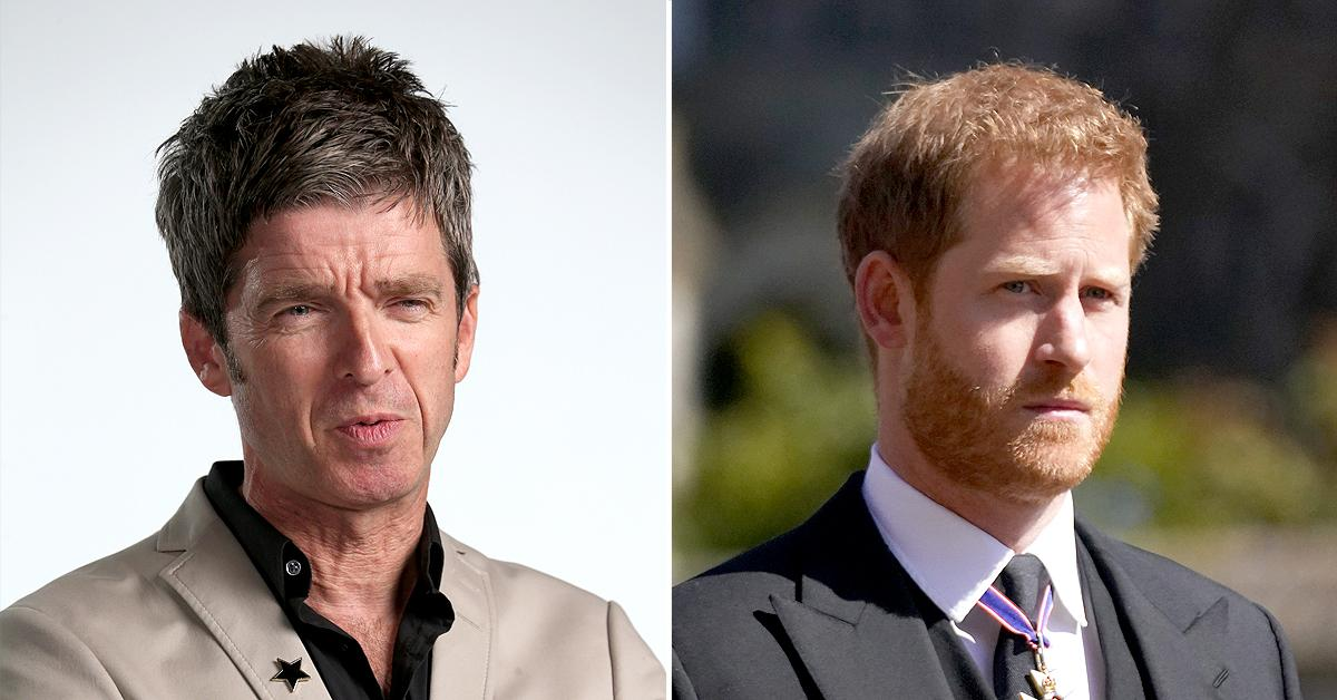 noel gallagher slams prince harry as typical snowflake