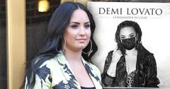 Demi Lovato Receives Fan Backlash After Releasing Political New Song