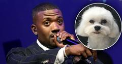 Ray J Missing Dog PP