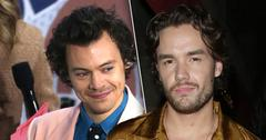 1D Alum Liam Payne (right) Defends Harry Styles' (left) Vogue Cover, See Reaction