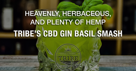 Heavenly, Herbaceous, And Plenty Of Hemp! – Tribe's CBD Gin Basil Smash