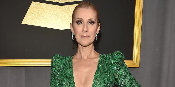 Celine Dion The Voice Green Dress Long