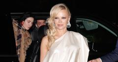not the lockdown love story pamela anderson new husband dan hayhurst accused of an affair by ex