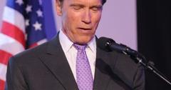 2011__05__Arnold_Schwarzenegger_May30news 300×280.jpg