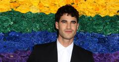 Internet Says Darren Criss Feels 'Gay': 'Glee' Cast Hilariously Reacts