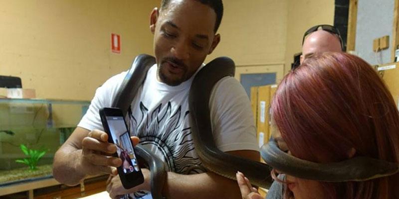Will smith snake australia video